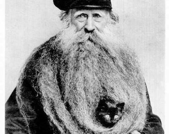 Cat in His Beard Bearded Man with Kitten Old Man Unusual Long Beard Funny Fancy Hat Charming Weird Eccentric Vintage Photography Photo Print