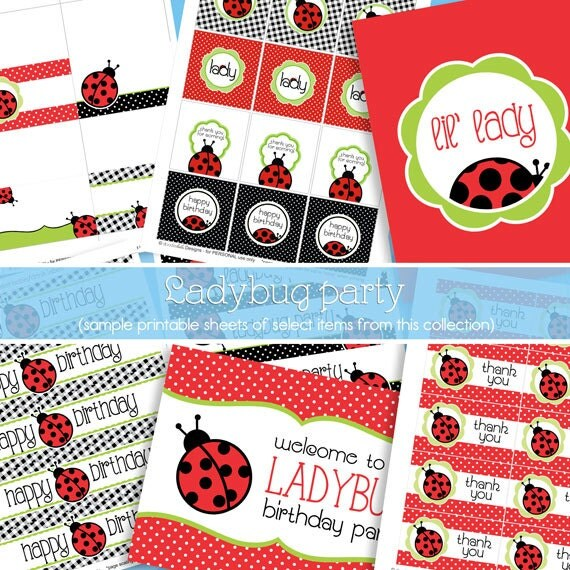 Red Ladybug Birthday Party Decorations