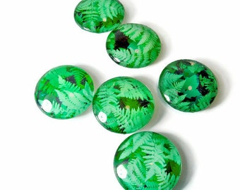 Lush Green Fern Magnets,  Gifts For Nature Lovers