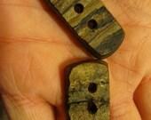 8 Shag Bark Hickory Bark Buttons.