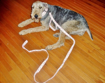 6 Foot Leash with bulit in Traffic Handle in your choice of fabrics