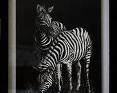 Zebra Scratch Art, Scratch Art and Colored Pencil Zebras, Black and White Art, Mixed Media Art