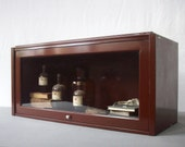 Vintage Industrial Metal Barrister Lawyer Bookcase / Metal and Glass / Book Storage / Collection Curiousities Display Case / Chestnut Brown