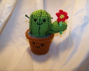Crochet cactus plant ANY colors and style you want