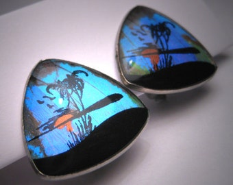 Antique Butterfly Wing Earrings Vintage Hawaiian Estate