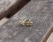 Tiny Starfish Stud Earrings, 14 Karat Gold Plated over Sterling Silver, Ready to Ship