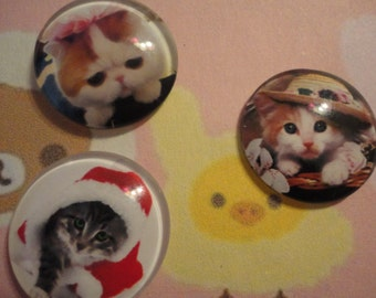 So kawaii kitten glass cabochon decoden diy charm 3 pcs---USA seller