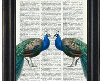 BOGO SALE Dictionary Prints Peacock Art Print Peacock and Bird Cage Dictionary Art Print Peacock Print HHP Original Design