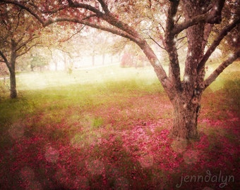 Raining Scarlet - fine art photograph, tree photography, surrealism, girls nursery decor, nature photography, fairy tale, spring