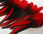 Big Feathers Red Feathers Big Red Feathers Red Black Feathers Laced Rooster Saddle Feathers Housewares Home Decorating Craft Feathers, 12