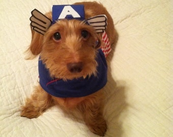 Small Dog / Dachshund Captain America Superhero Costume