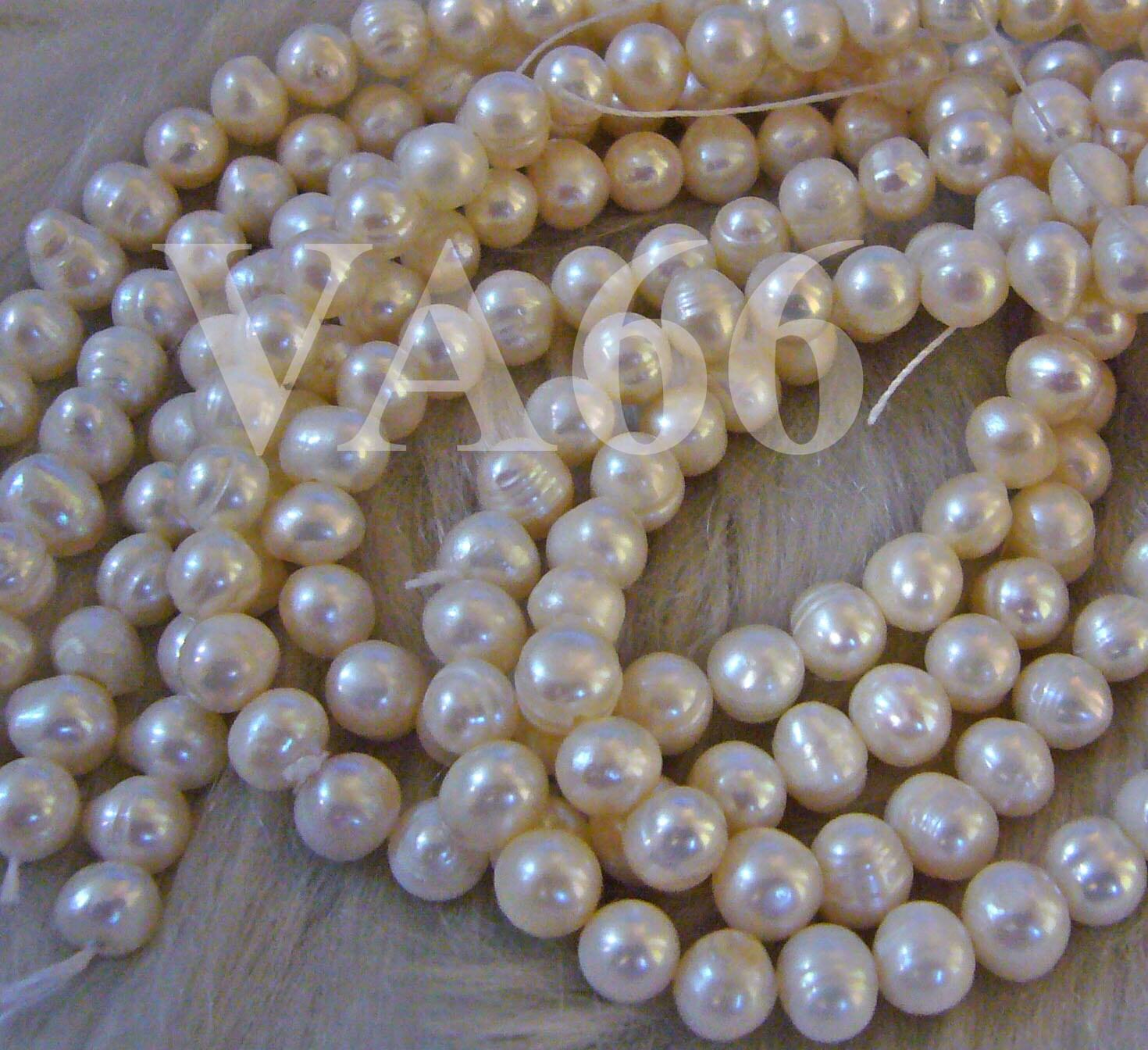 Pearl Beads: DIY 15 Fresh Water Pearls Round Pearl Beads White