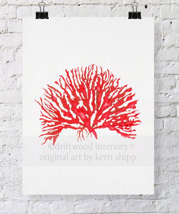 Sea Coral in Ruby Print IV