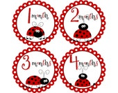 Baby Announcement, Monthly Baby Stickers, Monthly Baby Photos, Baby Gift, Baby Month Stickers, Monthly Stickers, Ladybugs (G047)