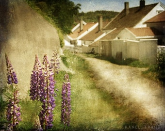 Scandinavian landscape photography, summer flowers, white houses, nature, Norway village life photo print