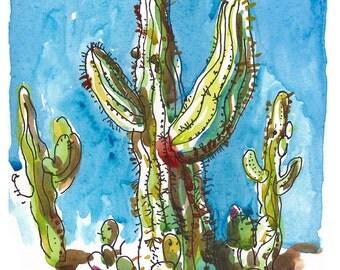 Gigantic Cacti, Saguaro National Park  - fine art print from an original watercolor sketch