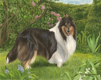 "New Limited Edition Collie print, ""Enchantment"""