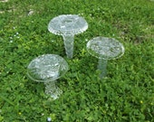 These are not Magic Mushrooms but they do bring crystal magic to the garden