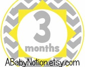 Yellow gray chevron baby monthly decal stickers baby shower gift