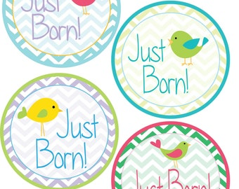 ADD ON Just Born Stickers for Baby, Just Born Stickers  - Birds and Chevrons - Just Born Stickers -Baby Shower Gift - Baby
