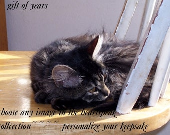 old/senior cat....gift of years ( a spirit's song ) celebration of journey cards/sentimental cards/unique empathy condolence cards