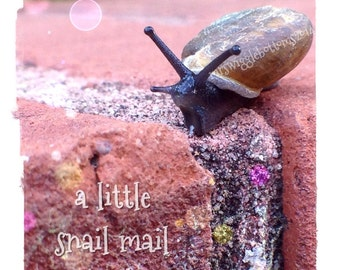Snail mail blank card