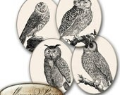Owls, antique design, decor greeting cards, birds -  70 mm x 90 mm 4 Ovals //  Digital Collage Sheet, scrapbooking , Ovals Circle Images(21)