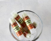 Pumpkin Pie   Moisturizing Lip Balm with Shea Butter
