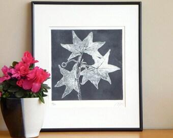 Original Etching Print Abstract STAR TREE Leaves Botanical Aquatint Printmaking Wall Decor Fine Art Engraving Print 12x12