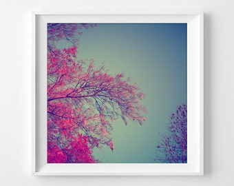 "Pink Nature Photograph Unframed / delicate dreamy abstract trees branches botanical art / hot pink teal / photography print / ""Pink Trees"""