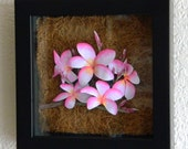 Hand painted Plumeria paper sculpture by artist Justin F. C. Miller