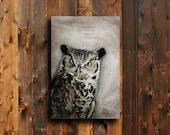 Great Horned Owl - Owl art - Owl photography - Owl decor - Owl canvas art - Owl - Bird photography - Animal photography