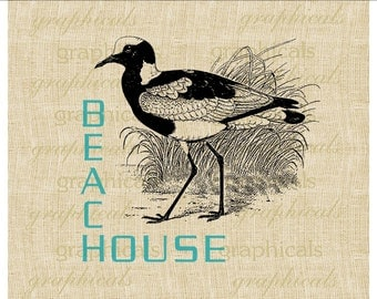 Shore bird Aqua Beach House Instant Digital download graphic image for Iron on fabric transfer burlap decoupage pillow card totes No 575