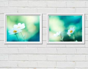 botanical photography nature floral print set of 2 8x10 fine art photography floral flower photography teal art print mint green blue cosmo