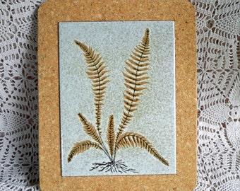 ADDITIONAL 10% OFF...SALE  Glazed Fern Tile Portugal in Heavy Cork Frame Vintage 8 by 10