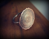 Growth Rings - Tree Rings Cross Section Ring - Copper and Sterling Silver Ring
