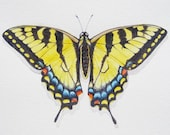 Swallowtail Butterfly Watercolor Print
