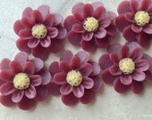 18 mm Umber Red Colour Resin Marigold Flower (.ag)