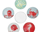 5 Round Glass Cabochons - Assorted Sea Animal - Dome - Flat Back - 20mm - Ships IMMEDIATELY from California - C235