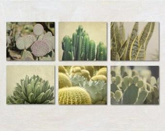 Cactus Photography Set, Succulent Art, Green Photograph Set, Six Prints, Southwestern Home Decor, Plant Pictures