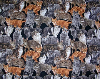 Realistic Mixed Cats Robert Kaufman Fabric by the yard