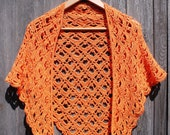 Crochet Lacy Triangular Shawl pattern - INSTANT DOWNLOAD PDF from Thomasina Cummings Designs