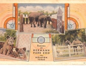 Vintage Postcard...Scenes at Hermann Park Zoo, Houston, Texas...Used...no 1509