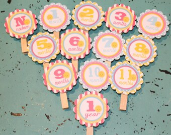 LITTLE MISS SUNSHINE 1st Birthday Photo Clips Banner Newborn - 12 months - Party Packs Available