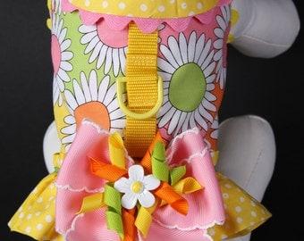SPRING:  Hello Sunshine Dog Harness