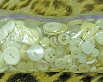 Huge Assortment of Vintage Various Sized White Buttons 1940 1950 1960 1970