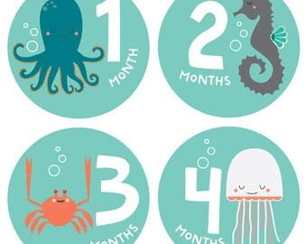 Gender Neutral Baby Monthly Stickers - Snorkeling Adventure Stickers - Months 1-12, shark, star fish, whale, snail