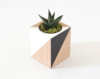 Woody planter - black & white - for cacti and Succulents