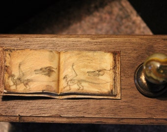 Dollhouse miniature dragon book