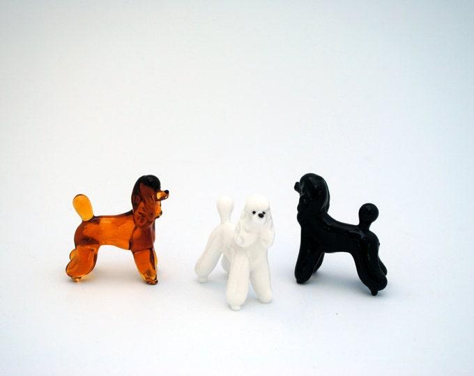 e31-10 Poodle